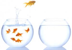 прыжок рыбки из аквариума